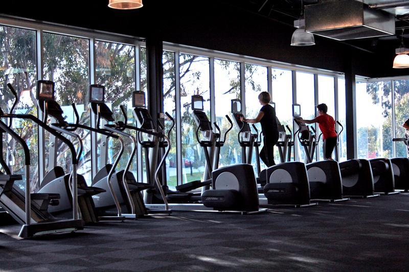 Gym_Cardio_Area_Overlooking_Greenery